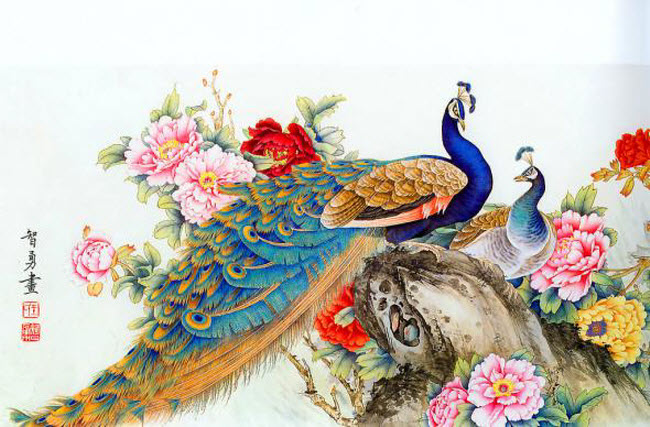 Peacock Paintings