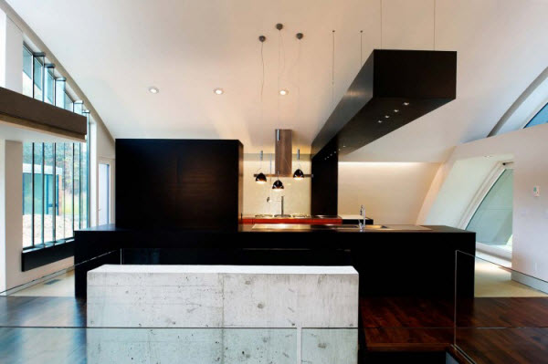 Attractive Arc House by Maziar Behrooz Architecture from New York