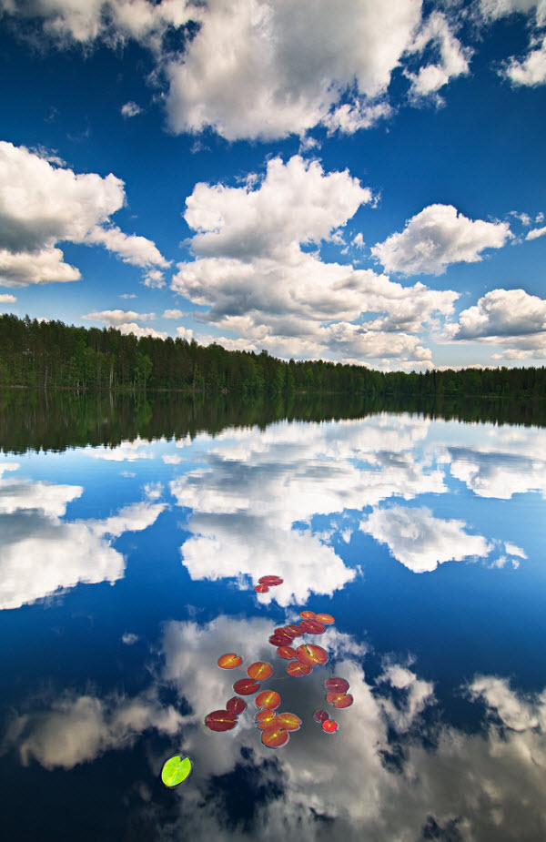 Beautiful examples of Reflection Photography