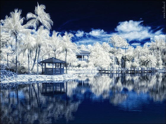 Infrared Photography by Maria Netsounski